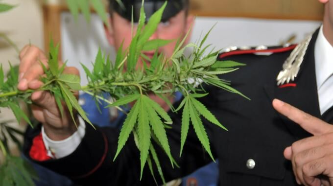 Marano, arrestato un uomo in possesso di pistola e 7 piantine di marijuana