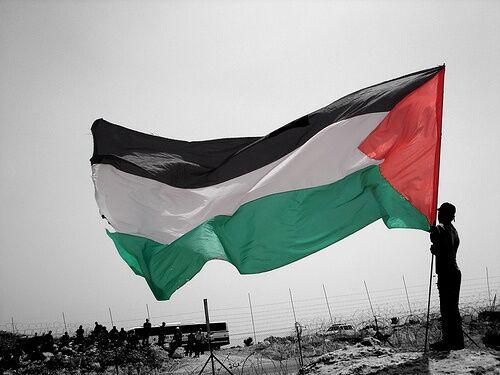 """""""Matite colorate per la Palestina"""", venerdì l'iniziativa alla Massimo D'Azeglio di Marano"""