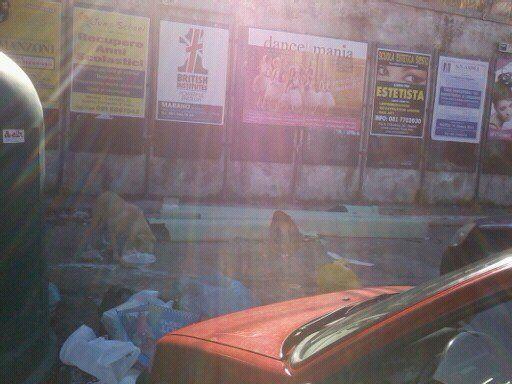 Ancora nuovi sversamenti di amianto in città: il materiale pericolo nei pressi della scuola Amanzio