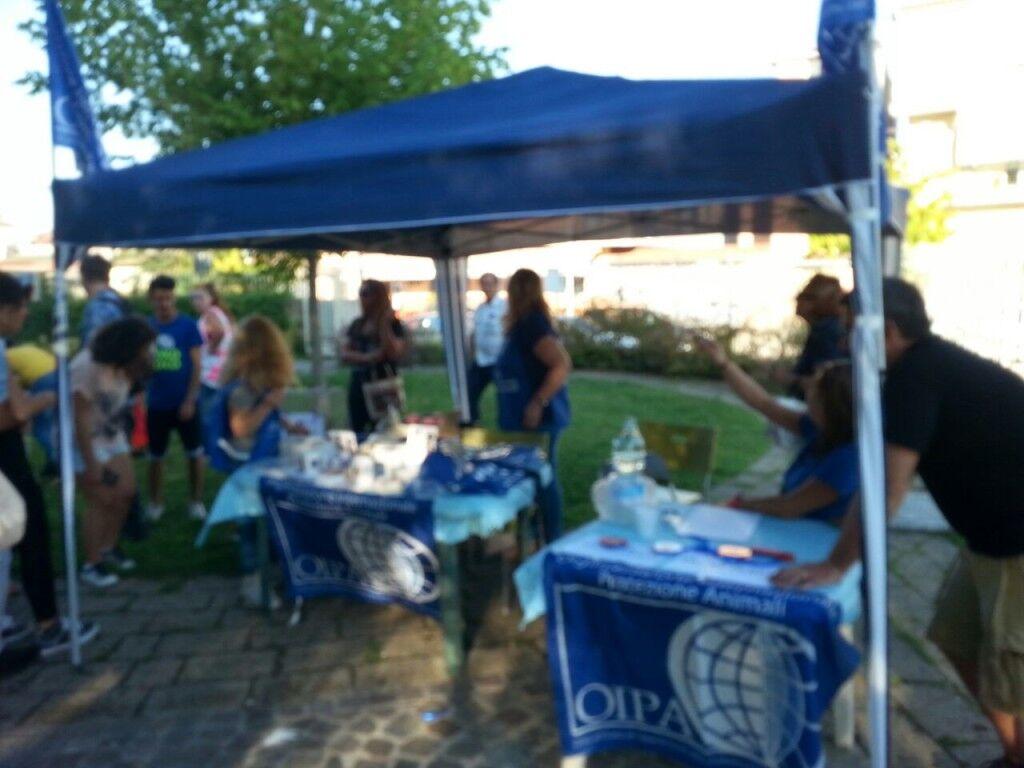 L'Oipa organizza una gara canina in villa comunale a Giugliano