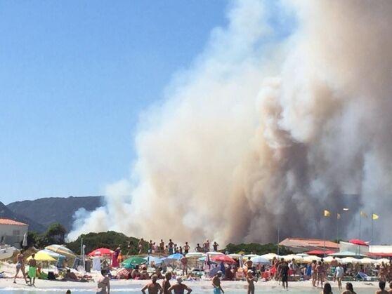 Terrore sul litorale, incendio in spiaggia. Un'intera famiglia in pericolo