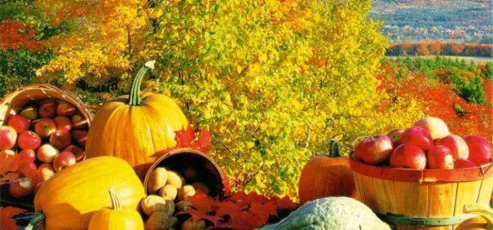 Dieta dell'autunno, ecco cosa mangiare dopo le abbuffate estive