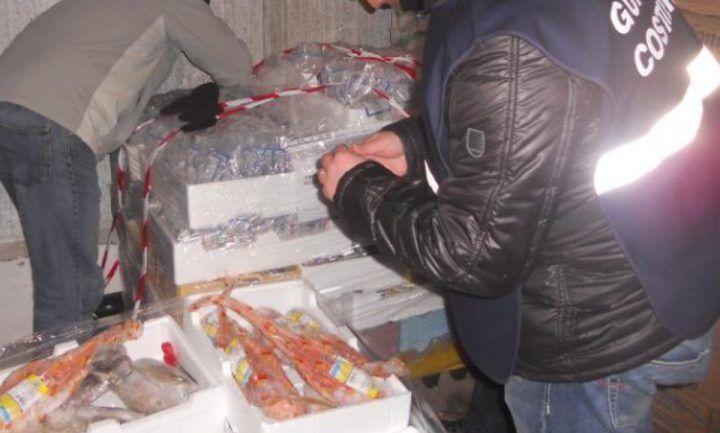 Giugliano, pesce privo di tracciabilità immesso sul mercato della Campania: sequestrata azienda