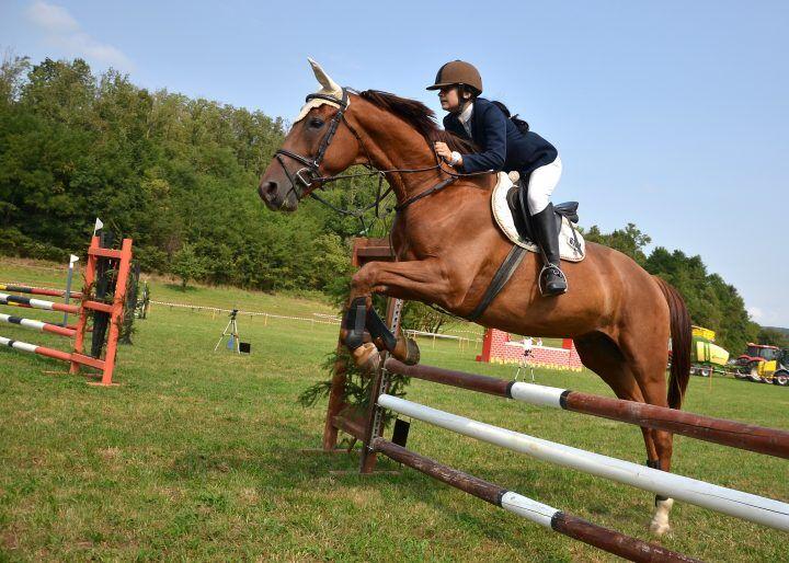 Coppa d'Oro città di Caserta, l'equitazione giuglianese in concorso