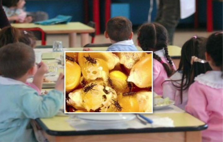 Arzano: insetti nel pane per i bimbi, esplode la rivolta dei genitori