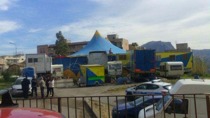 """Scene raccapriccianti al circo Orfei a Giugliano: """"era un lager per animali"""". FOTO"""