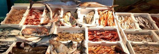 """Pangasio ritirato dai supermercati. """"Pesce allevato in acque inquinate"""""""