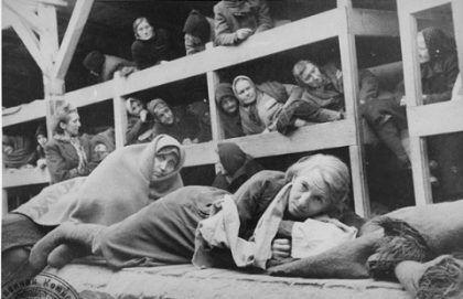Auschwitz 31