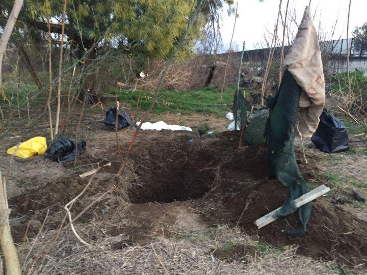 Orrore ad Afragola, ritrovati due cadaveri tagliati a metà in sacchi dell'immondizia