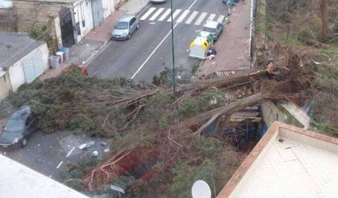 Meteo Napoli e Campania, allerta vento della Protezione Civile