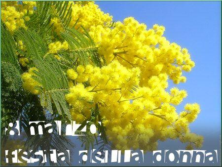 Festa Delle Donne 8 Marzo Immagini Mimose Frasi Auguri Video Gif