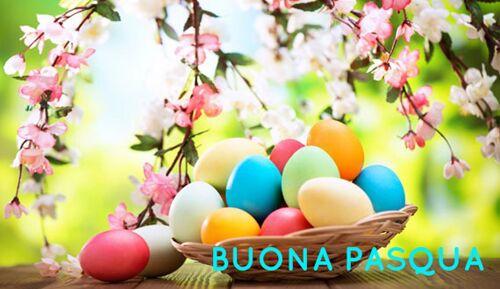 Buona Pasqua: immagini per auguri, frasi, video, gif divertenti. FOTO