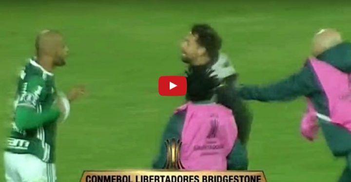 Penarol – Palmeiras, rissa in campo: Felipe Melo scatenato dopo la partita. VIDEO