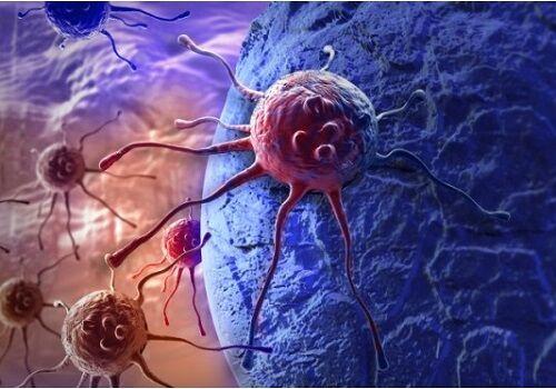 Napoli, sensazionale scoperta: ecco come fermare la crescita delle cellule tumorali