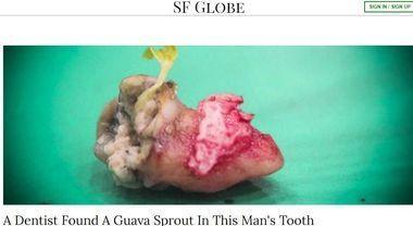 Ha mal di denti da giorni: va dal dottore e fa una scoperta choc
