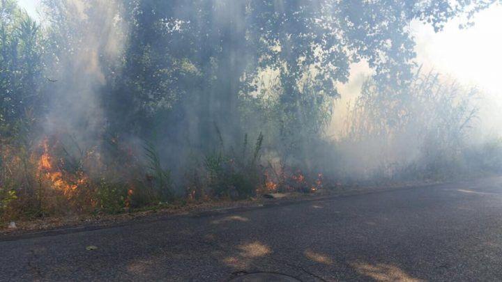 """Varcaturo, incendio nei pressi dell'isola ecologica e disagi per i cittadini. Poziello: """"In fiamme sterpaglie ed erba secca"""""""