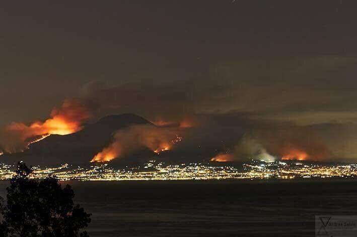 Vesuvio, gatti cosparsi di benzina per appiccare gli incendi: fiamme per l'intera notte