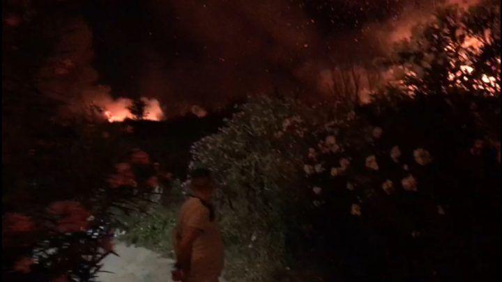 """Incendio a Calvizzano, il titolare di villa Holiday: """"Abbiamo usato i nostri idranti per spegnere le fiamme"""""""