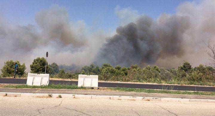 Incendio alla Fiat di Termoli, stabilimento evacuato. Canadair in azione