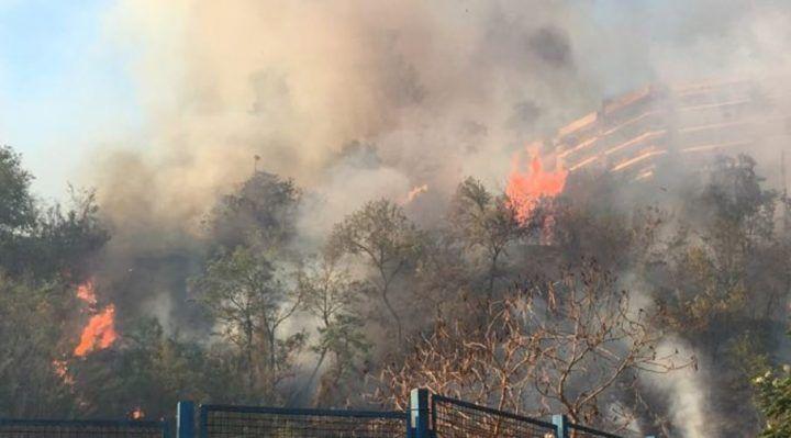 Napoli, incendio a Fuorigrotta: residenti terrorizzati