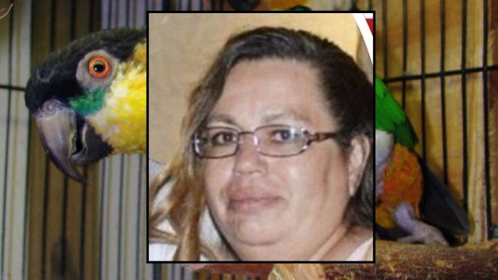"""Uccide il marito con 5 colpi di pistola, incastrata dal pappagallo """"chiacchierone"""""""
