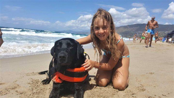 Tragedia sfiorata a Palinuro: bimba di 8 anni salvata da un cane eroe