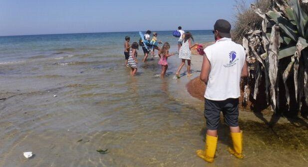 Puglia, mare a rischio malattie? Ecco i tratti da evitare secondo Legambiente