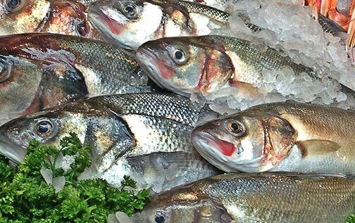 Pronto per le tavole della provincia di Napoli, sequestrato pesce avariato