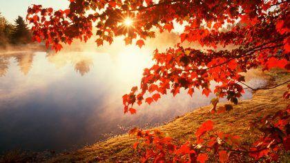 benvenuto autunno frasi immagini video whatsapp instagram facebook