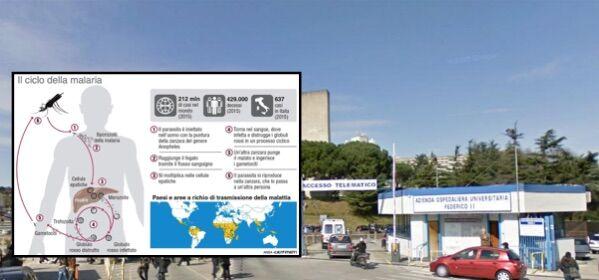 """Due casi di malaria a Napoli, l'esperta: """"No allarme, evitare psicosi"""""""