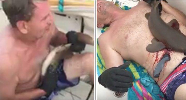 Florida, squalo si attacca al corpo di un uomo: gli amici lo salvano. VIDEO