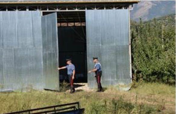 Blitz in un capannone, 5 arresti: sono di Giugliano, Mugnano, Marano e Sessa Aurunca