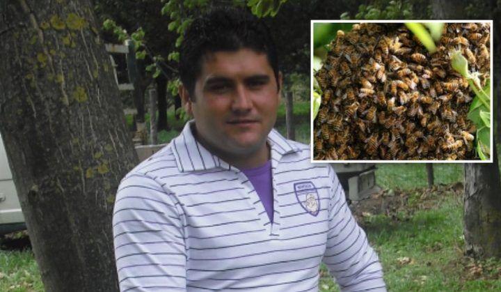 Tragedia in Campania, Angelo De Simone muore a 36 anni punto dai calabroni