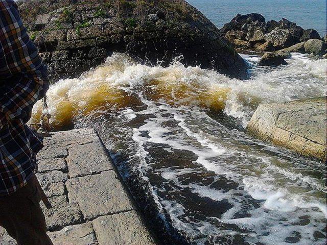Scarichi fognari in mare a Licola, finalmente si muovono anche i Verdi