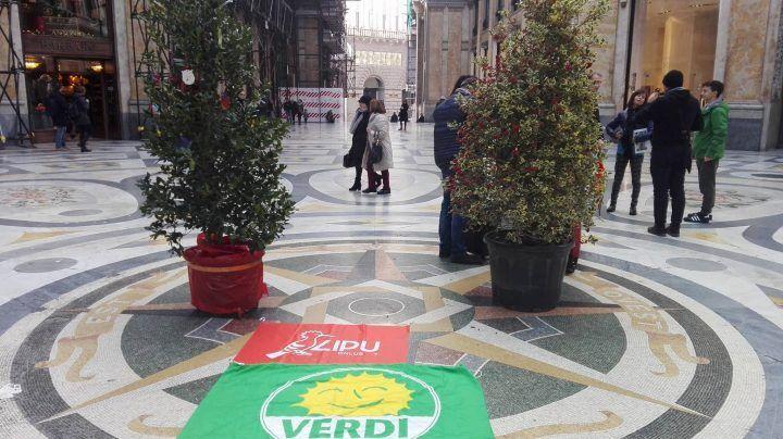 Napoli, battaglia contro le baby gang: nuovi alberi in Galleria