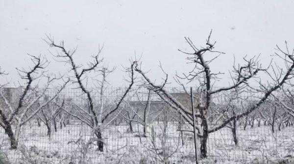 allerta meteo per neve nel napoletano