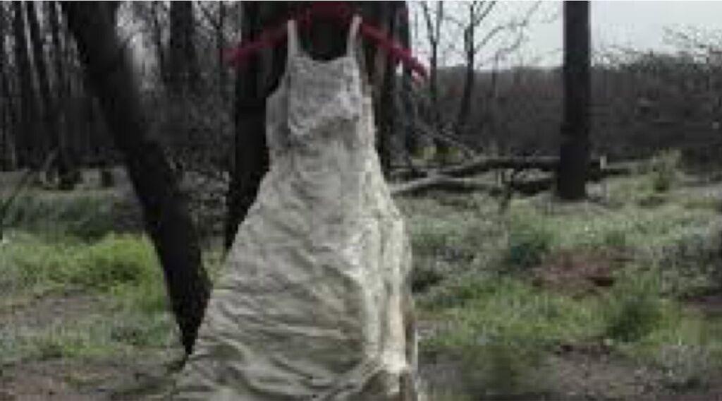 abito da sposa abbandonato sul vesuvio mistero