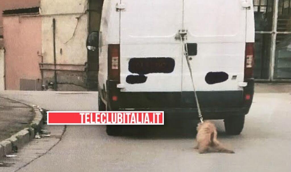 sant'antimo cane trascinato furgone
