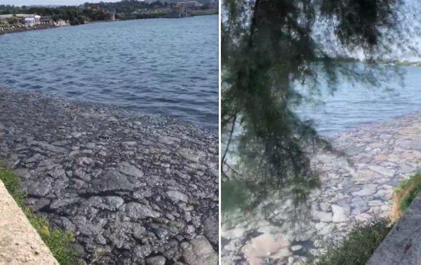 bacoli lago fusaro