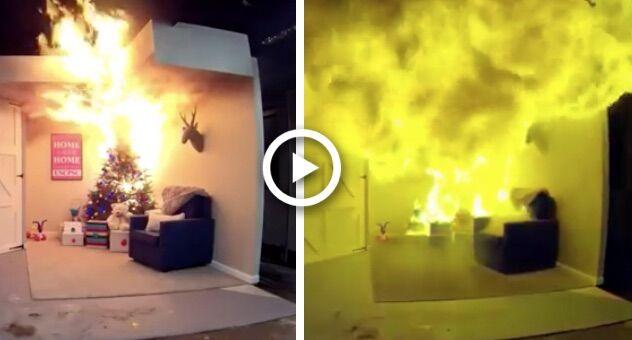 incendi albero di natale video