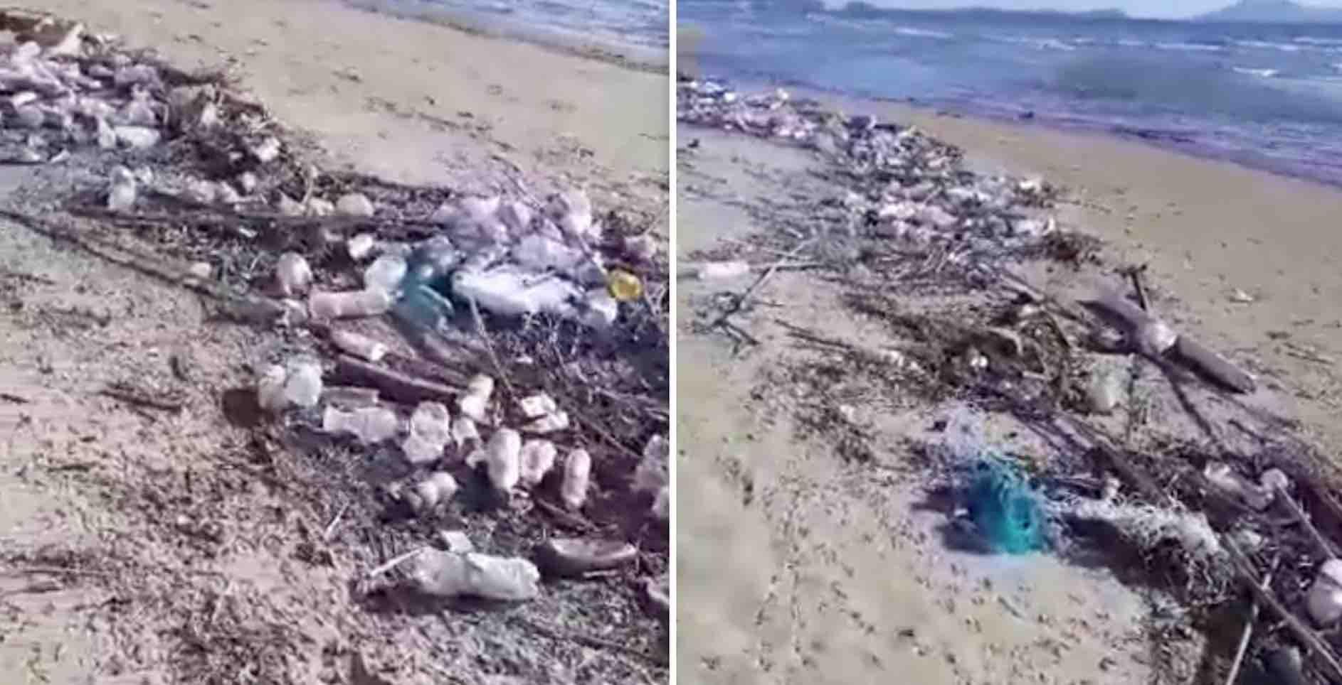 Licola spiaggia discarica