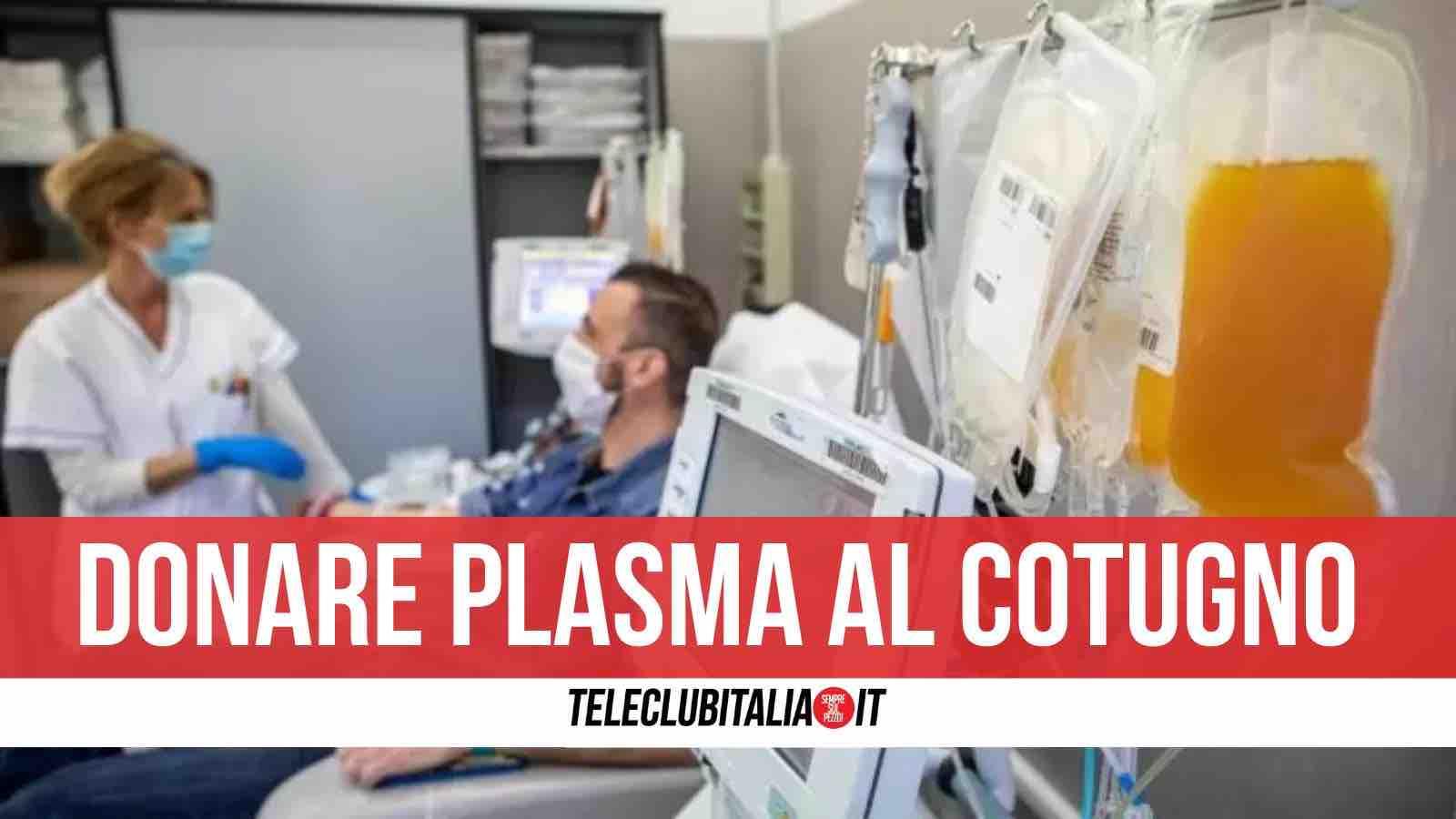 plasma cotugno