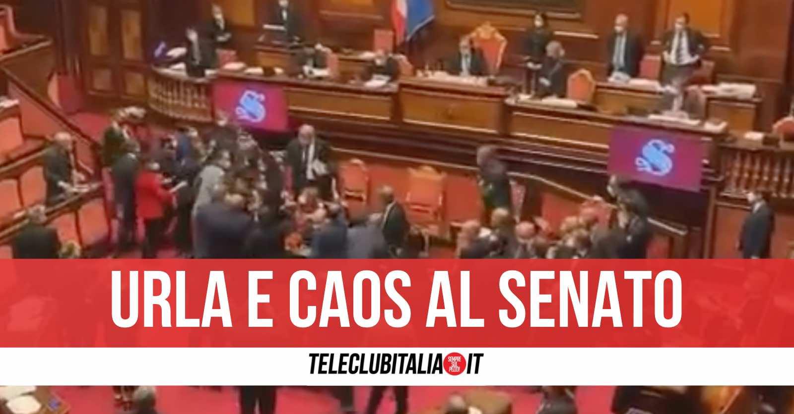 video senato caso lega