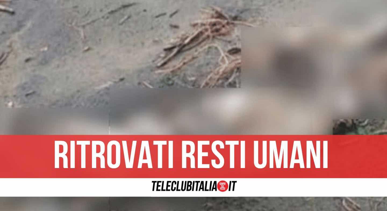 scheletro umano spiaggia