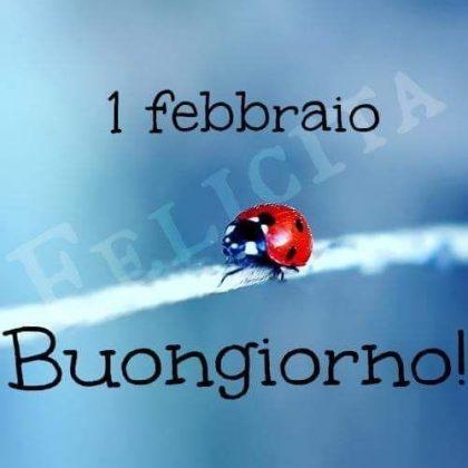 buon mese di febbraio 2