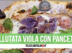 vellutata viola con pacetta pizza lievito madre giugliano