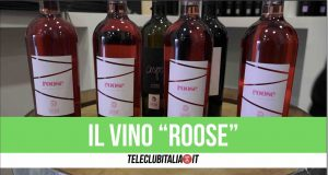 cantine cecere vino roose giugliano