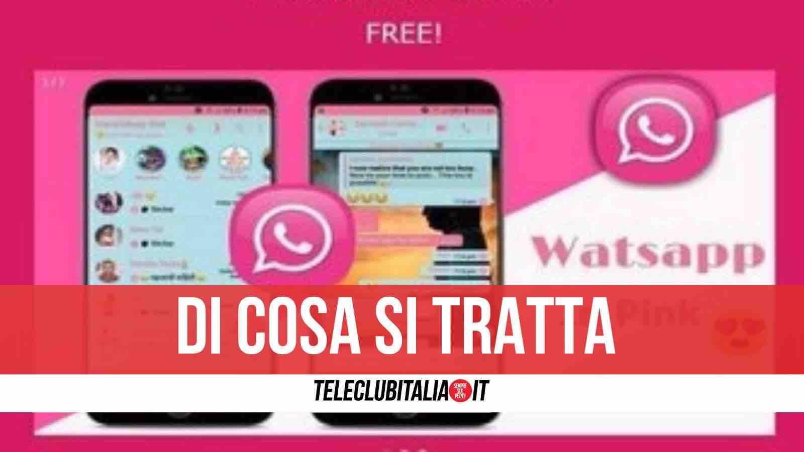 whatsapp pink rosa