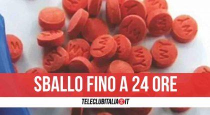 Maxi sequestro di cocaina a Venezia: arrestato corriere con 22 kg di stupefacenti