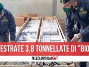 sequestrate 3,8 tonnellate di sigarette
